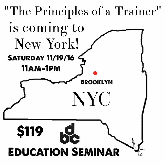 NY Principles Of A Trainer